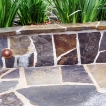Landscaping Installation at Modern Sausalito Home